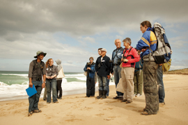 Beach-nesting birds project volunteers learning about Hooded Plovers