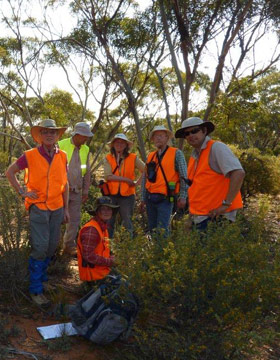 Volunteers at Gluepot Reserve checking Malleefowl mounds
